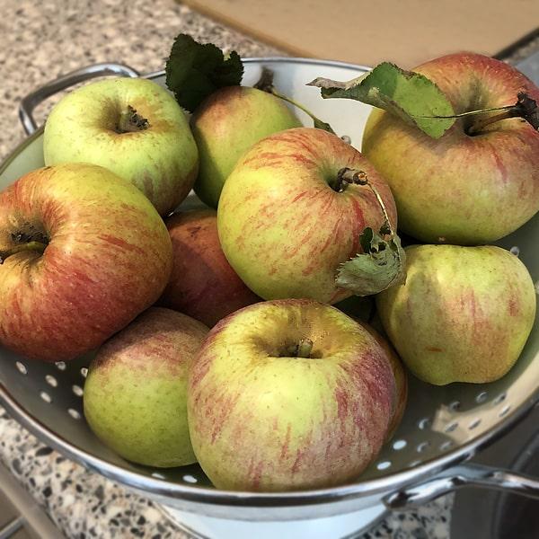 appelgebak recept